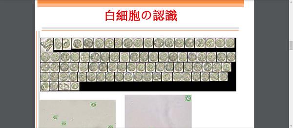 Screenshot - 2020-12-30T010340.825.png