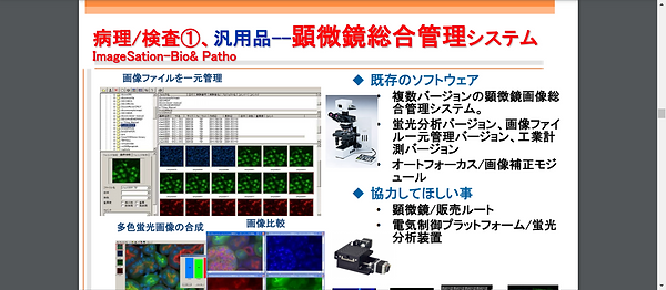 Screenshot - 2020-12-30T003656.995.png