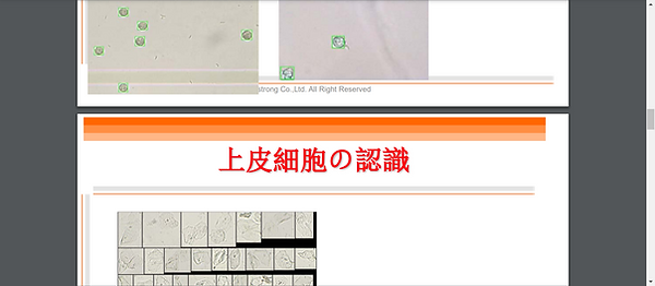 Screenshot - 2020-12-30T010505.625.png