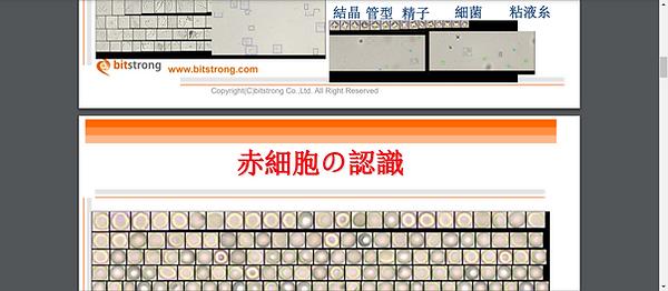 Screenshot - 2020-12-30T010247.303.png