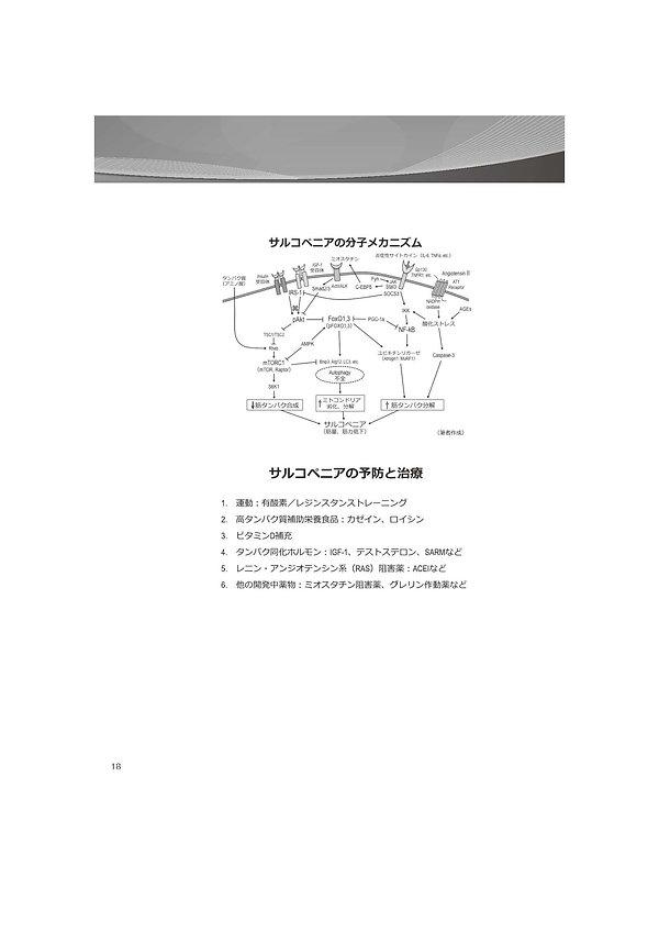 HOCIT_ページ_153.jpg