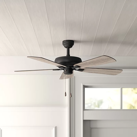 42_ Raseborg 5 Blade Ceiling Fan.png