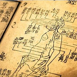 Ancient Chinese Medicine Acupuncture Diagram - Chevonne Kord Therapies