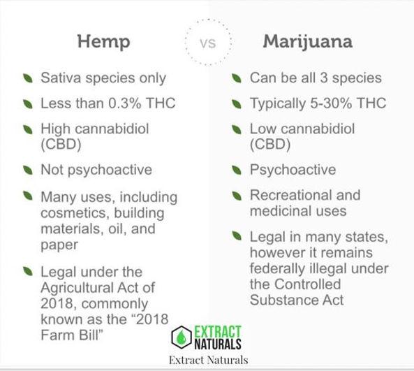 Extract Naturals CBD vs Marijuana Logo p
