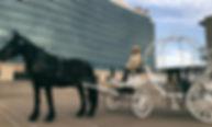 downtown branson carriage rides, hilton hotel, the branson landing, missouri tourism