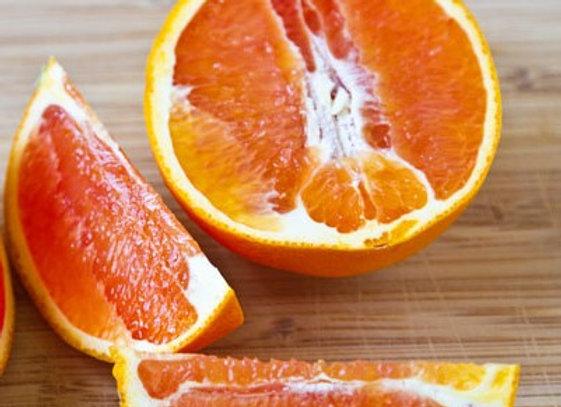 Cara Cara Navel Orange Tree