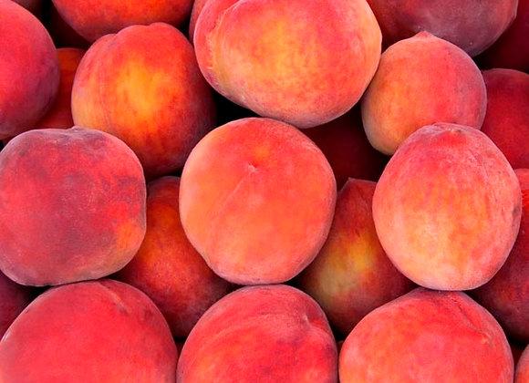 Red Skin Peach Tree