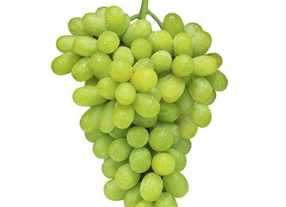 Thompson (White) Seedless Grape