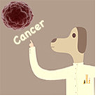 What do dogs teach us about the detection of cancer?