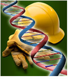 Genetic testing and occpational illness