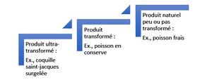 Classification - produit transformé