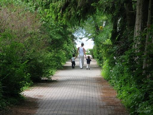 Des enfants plus attentifs dans un environnement plus vert