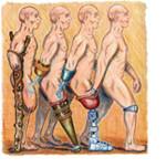 La création de tissus et d'organes de remplacement : science ou science fiction ?