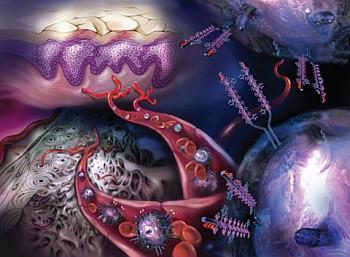Immunologie-cancérologie : UM171, la molécule qui multiplie les cellules souches