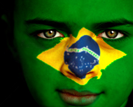 Learning from emerging economies : the case of Brazil