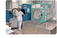 The requirements of the laundry services must be considered