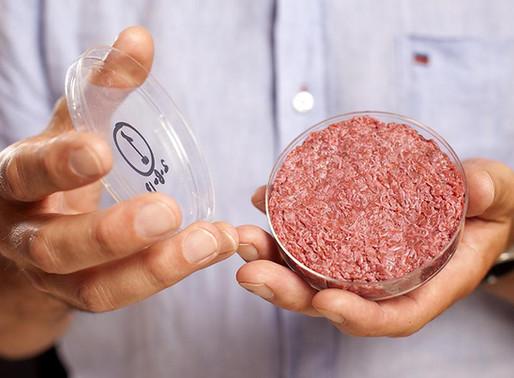 La viande in vitro, une alternative crédible?