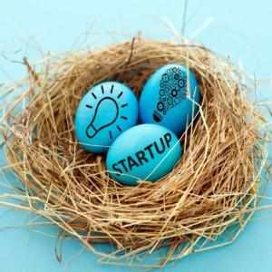 Les incubateurs et accélérateurs d'entreprises