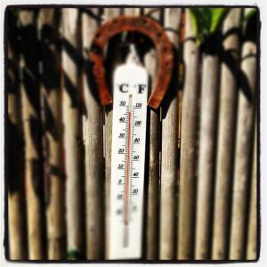 Thermomètre_khanelle_viaFlickr_46C