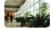 Inciter les établissements de santé à faire des choix écologiques
