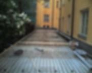 Photo-0245.jpg