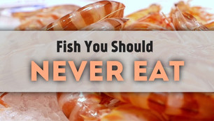 Top 7 Fish To NEVER Eat!