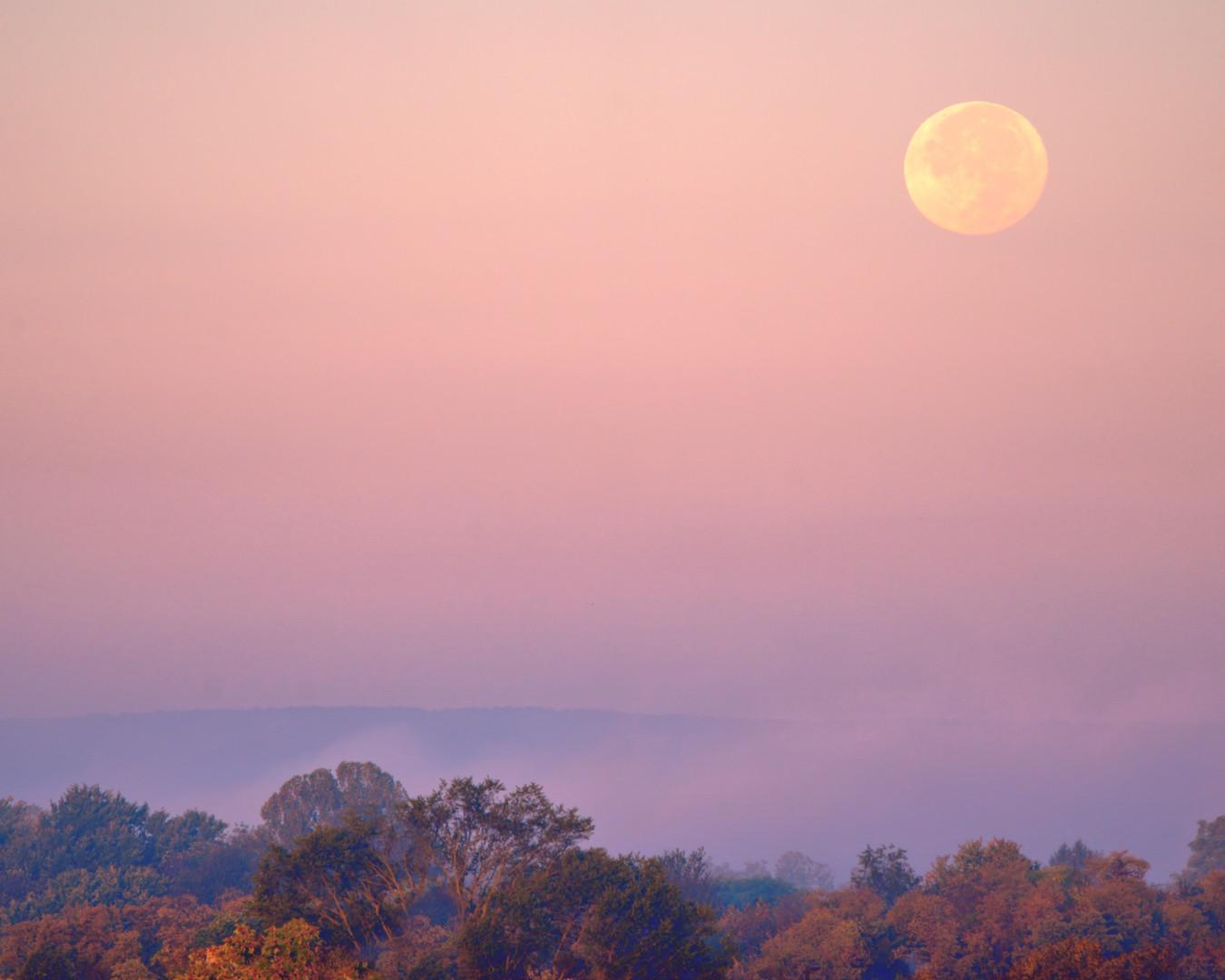 Morning Moon Rise