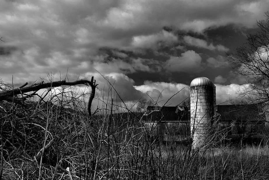 The Empty Barn