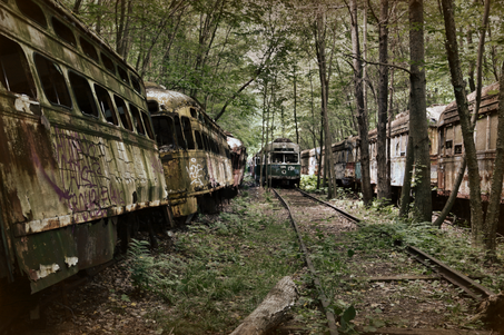 In A Trolley Graveyard