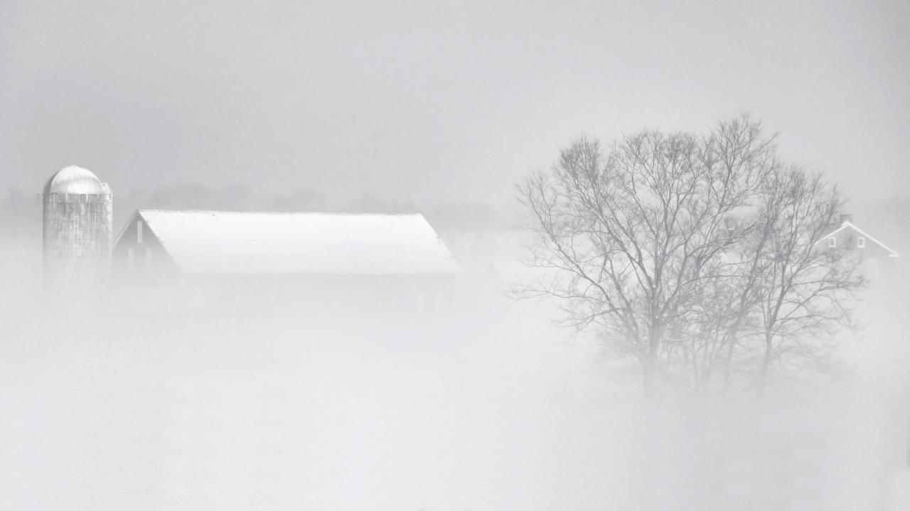 March Fog on the Farm