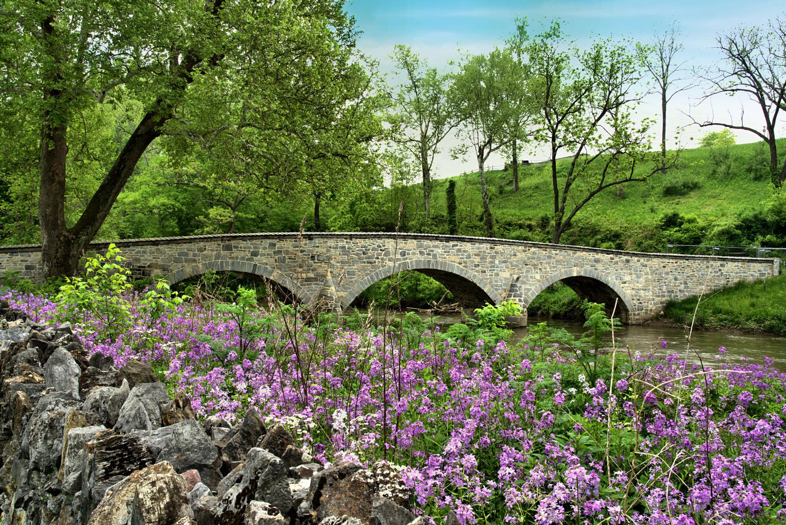 Burnside Bridge at Antietam National Bat