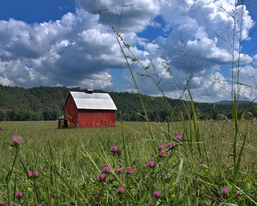 Rural West Virginia