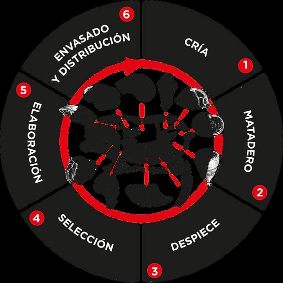 CIRCULO-SUBIRATS-PROCESO.png