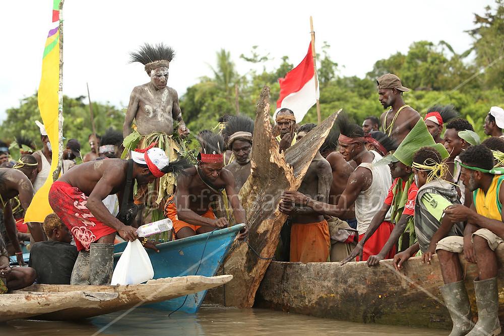 Pohon mbitoro diarak pulang melewati sungai untuk kemudian dipahat menjadi patung