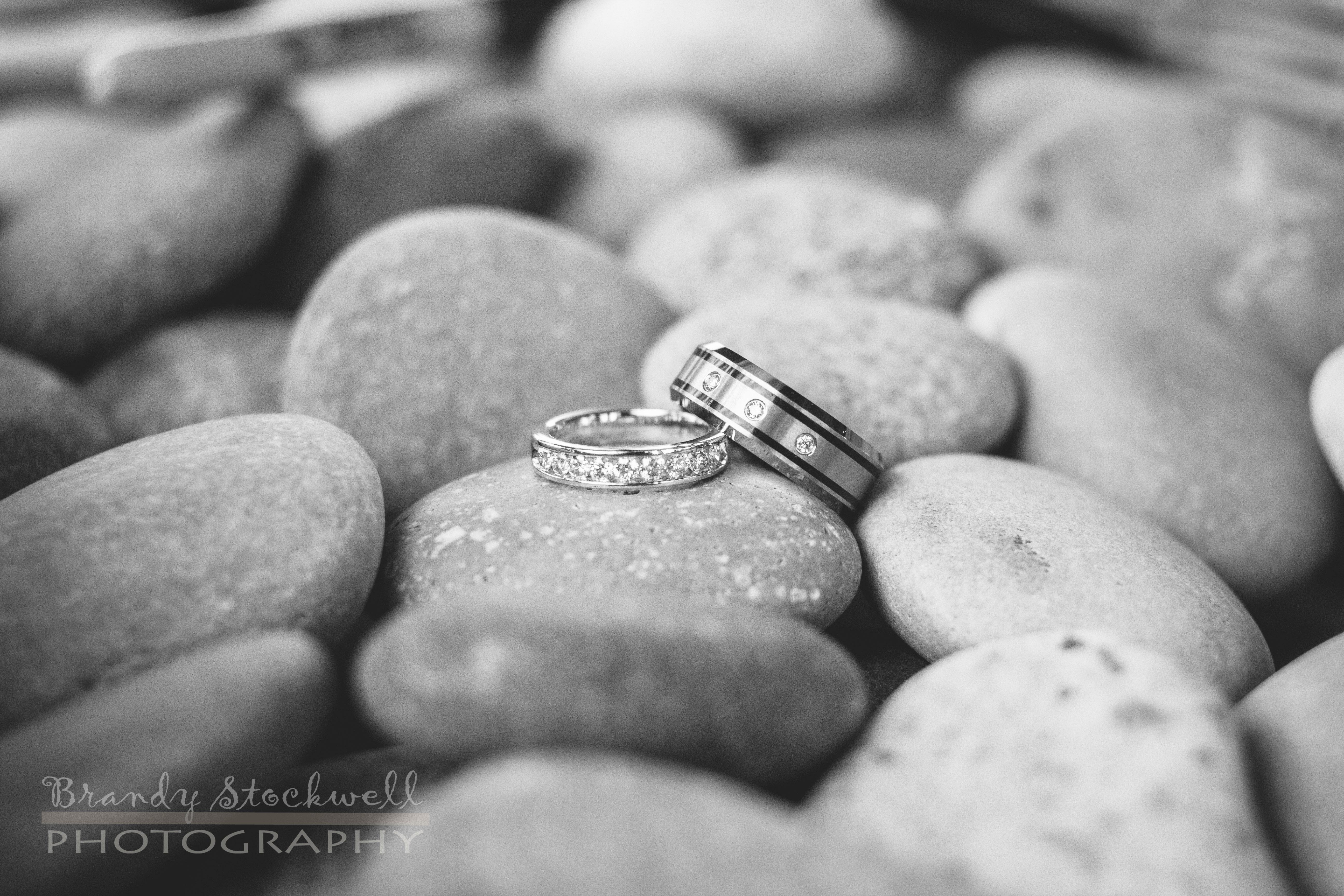 Smith_Repanich-Wedding-7339