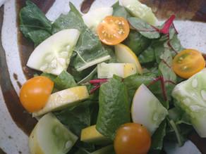 The Official PRFC Garden in a Box Demo Garden Salad