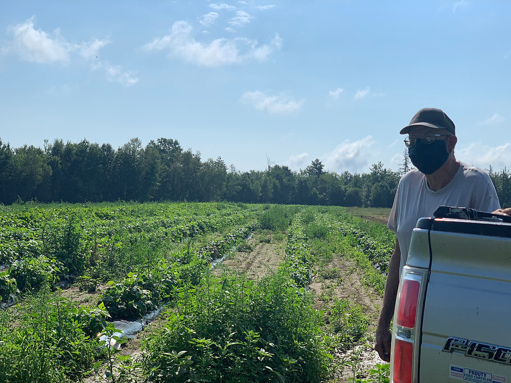 Richard stands to the left, leaning slightly on his truck by some of his crops