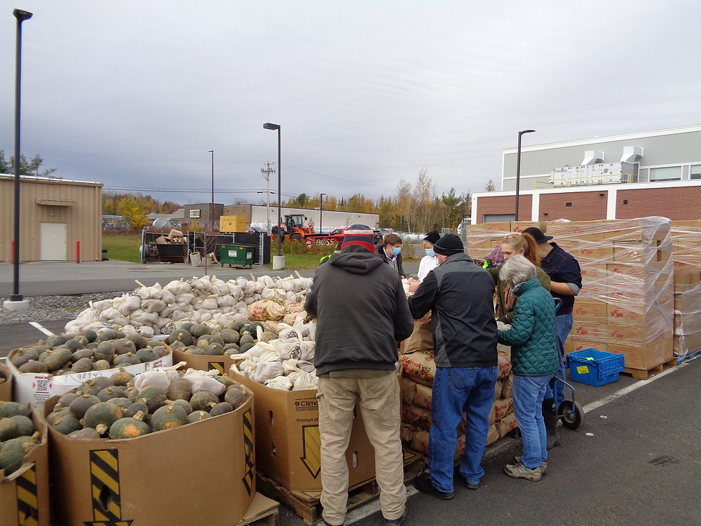 Volunteers stand around large pallets at the Piscataquis County Ice Arena containing acorn squash and 50lb bags of potatoes which they pack into smaller bags before a drive-through free food distribution begins.