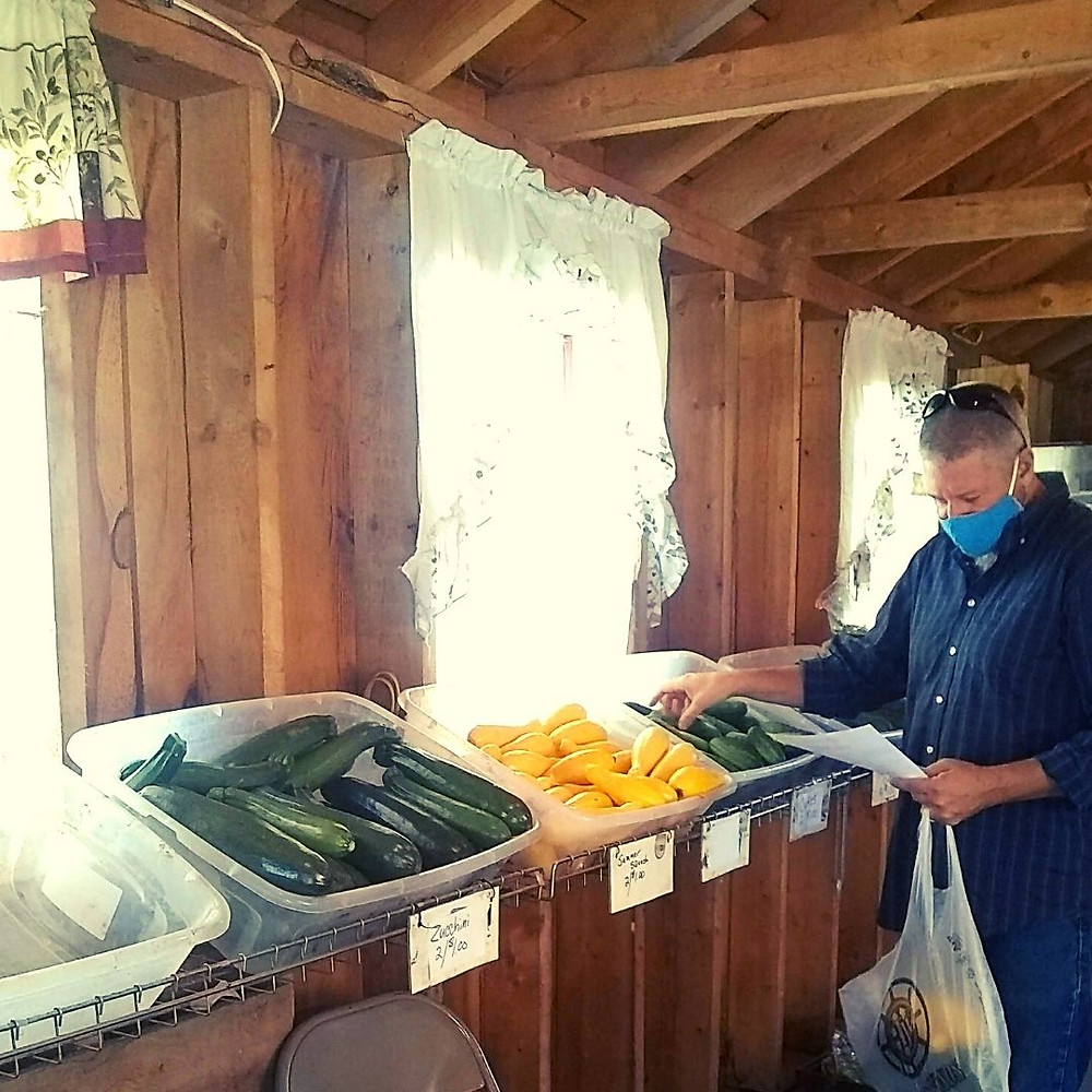 A man in a blue shirt with a blue mask reaches for summer squash to pack into a plastic bag for individual senior orders.