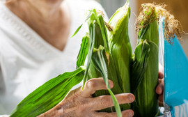 Copy of produce (3).jpg