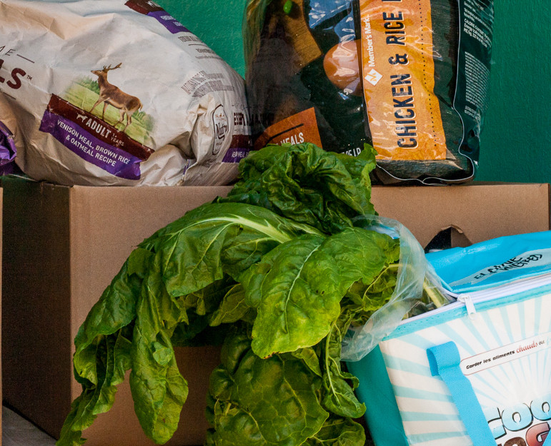 Close-up photo of fresh swiss chard from Stutzman's farm, dog food and Commodities Supplemental Food Boxes