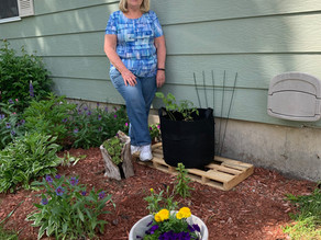 An Update from Debbie's Garden!