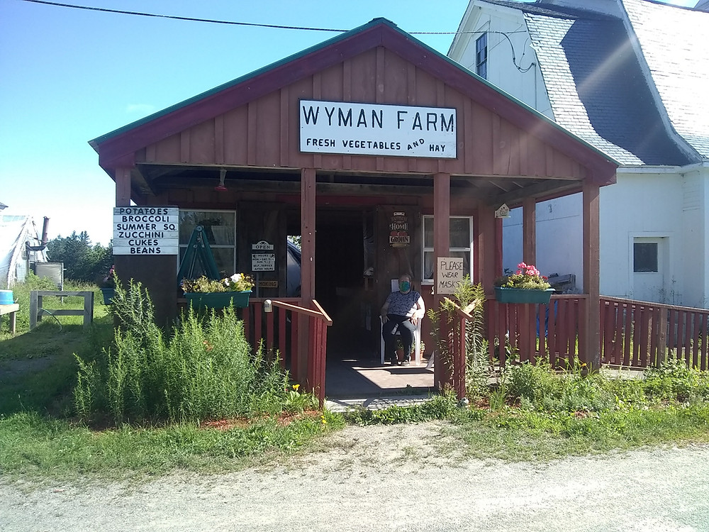 "Marilyn Wyman sits on the porch of the farm stand wearing a mask. She sits next to a planter of pink flowers. The sun is shining. The sign on the farmstand reads ""Wymans Farm Fresh Vegetables and Hay"""
