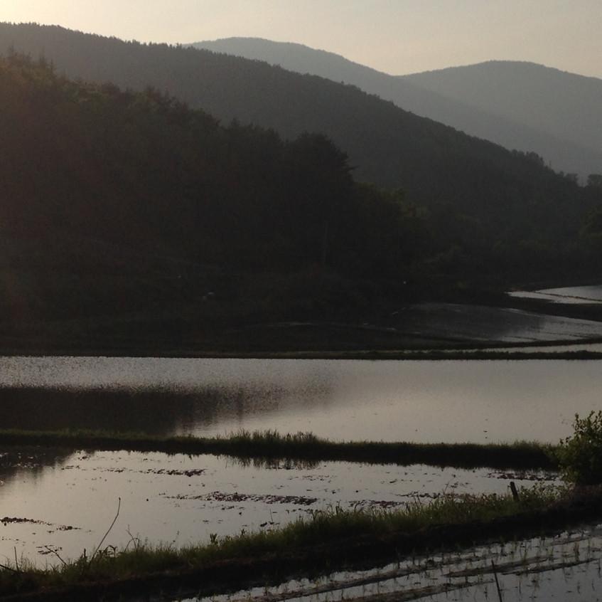 Gyongju Corée du Sud
