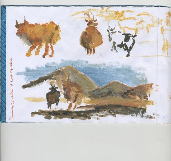 Novembre en Mongolie