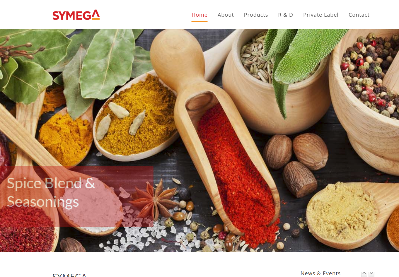 SYMEGA FOOD INGREDIENTS