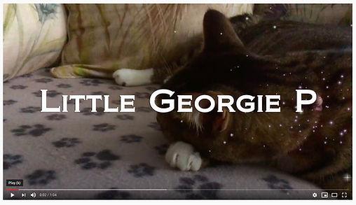 Little Georgie P....jpg