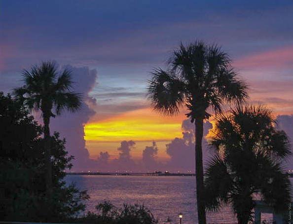 Tampa_Sunset_img.jpg