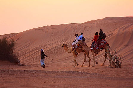 Dubai_Camel_Ride_img.jpg
