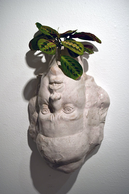 Stephanie Dishno - Planter Head Upside Down (SAD-1)